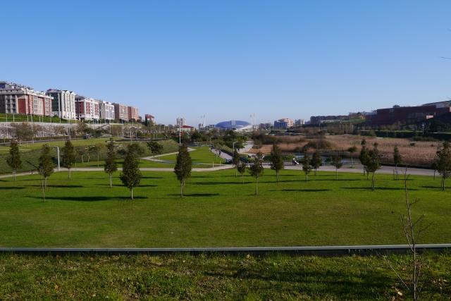 park parque santander llamas escenario
