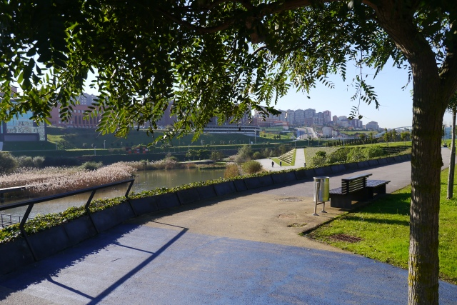 llamas santander park parque terracing