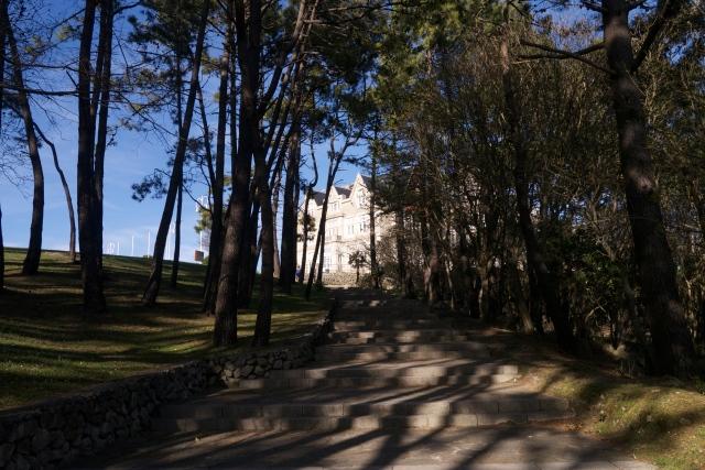 Pamela Cahill Magdalena Palace Palacio Santander Spain Woodland Trees Paths