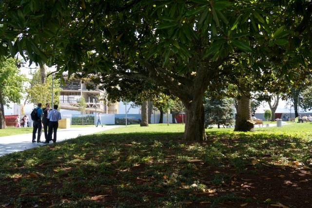 trees pereda gardens Santander Botin Centre Spain