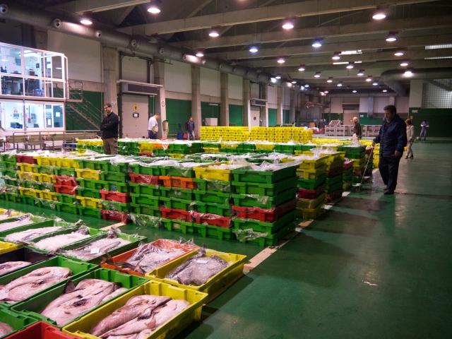 New lonja fish wholesale pescado market Santander Cantabria Spain